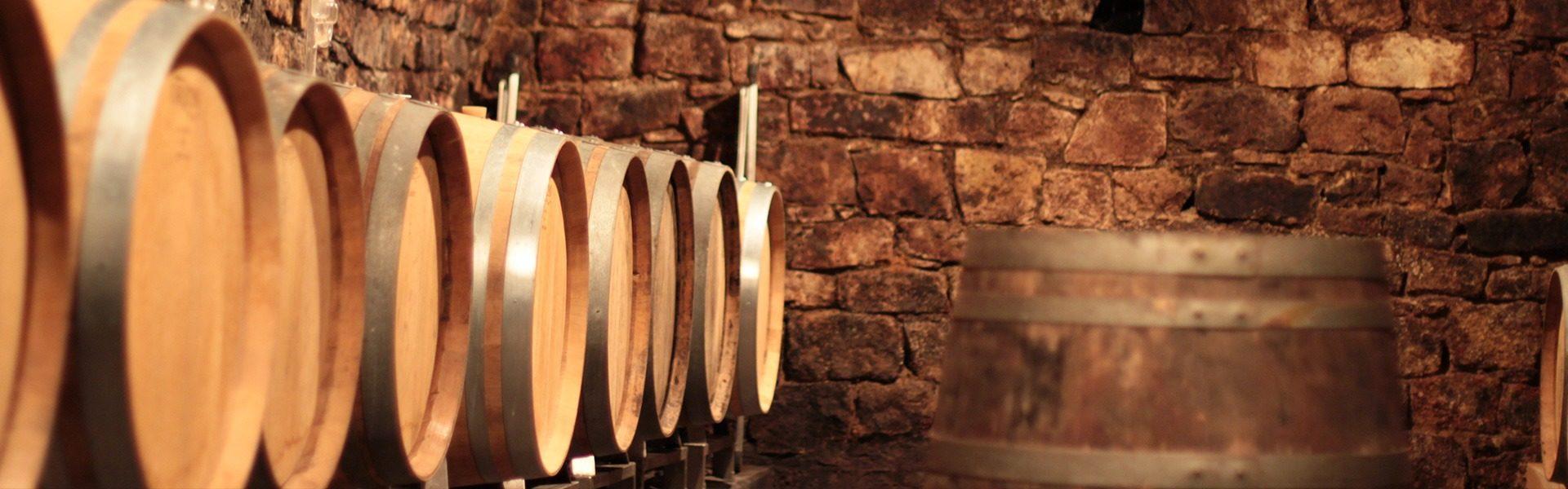 Weinkeller Beleuchtung Bild Referenz